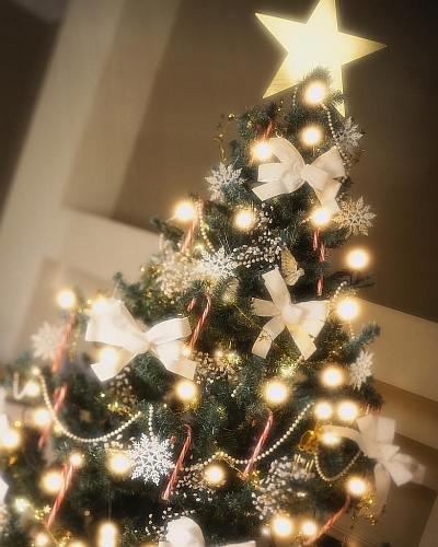 christmas_tree_star.jpg